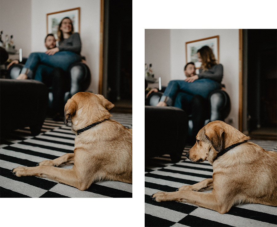 Dog and couple simple natural cosy photo shoot beautiful interior - Photographer in Prenzlauer Berg Berlin